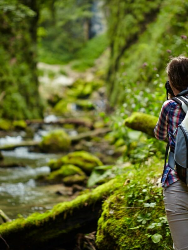 Brunette Woman Pictured from the back taking picture of bright green forest and river