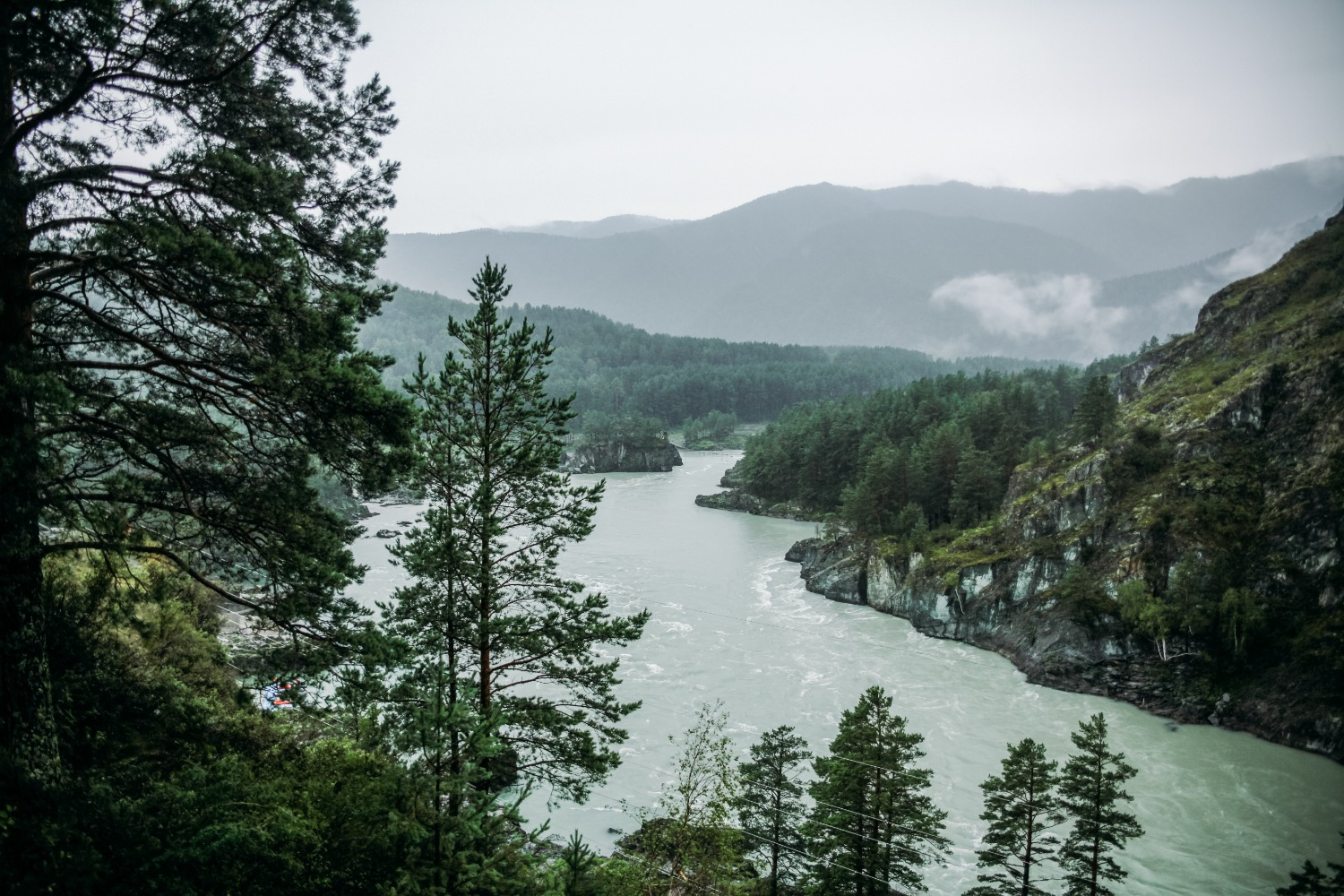 Foggy skies in forest overlooking winding river