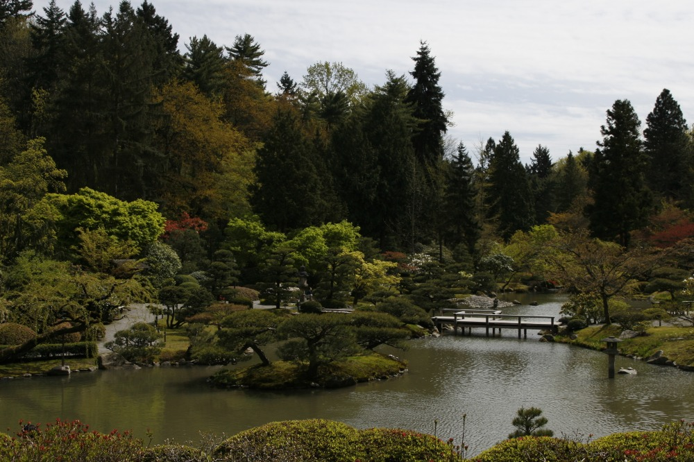 Seattle Japanese Garden 3 (GLGH) (1)