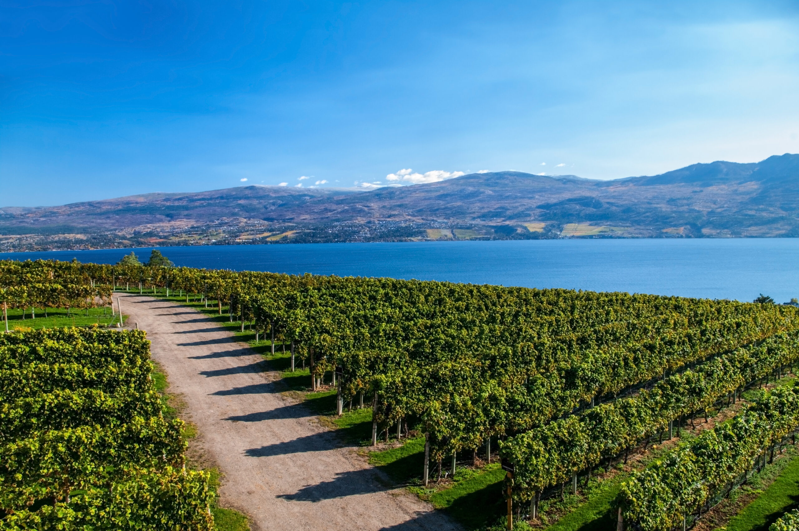 View from Mission Hill Winery of Lake Okanagan and the mountians