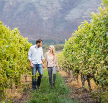 Young happy couple walking next to each other while holding hands in the grape fields